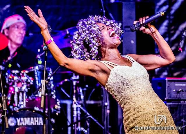 New-Orleans-Jazz-Festival_DATEs_115_Foto_Andreas_Lander.jpg