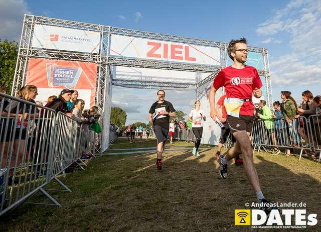 Firmenstaffel-2015_erste-Bilder_059_Foto_Andreas_Lander.jpg