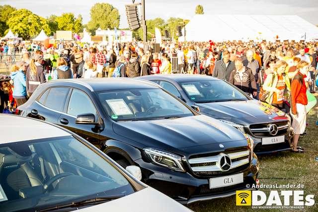 Firmenstaffel-2015_erste-Bilder_066_Foto_Andreas_Lander.jpg