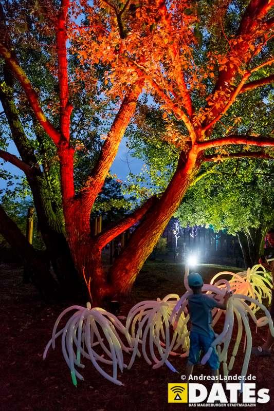 LichterZauberfest_007_Foto_Andreas_Lander.jpg