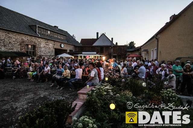 Kultur_auf_den_Höfen_2015_eDudek-7332.jpg