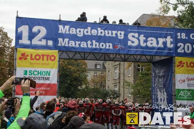 MD-Marathon_18.10.2015_eDudek-2870.jpg