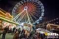 weihnachtsmarkt-magdeburg-524.jpg