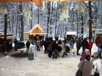 Waldweihnachtsmarkt Möllensdorf