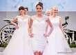 Hochzeitsmesse-Eleganz-2016_043_Foto_Andreas_Lander.jpg