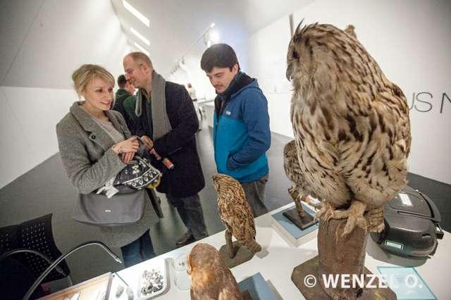 lange-nacht-im-kunstmuseum-magdeburg_Wenzel_604.jpg