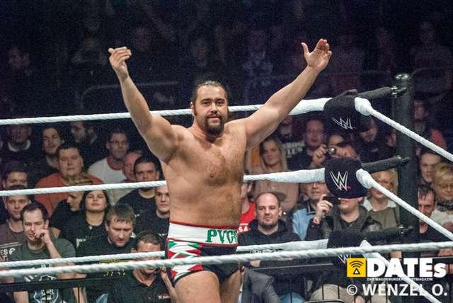 wrestling-magdeburg_601.jpg