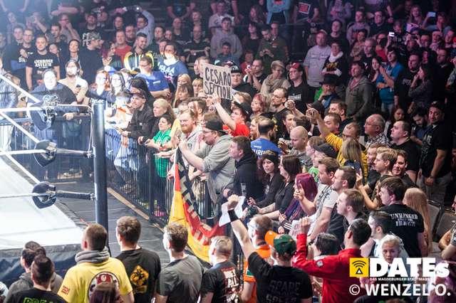 wrestling-magdeburg_617.jpg
