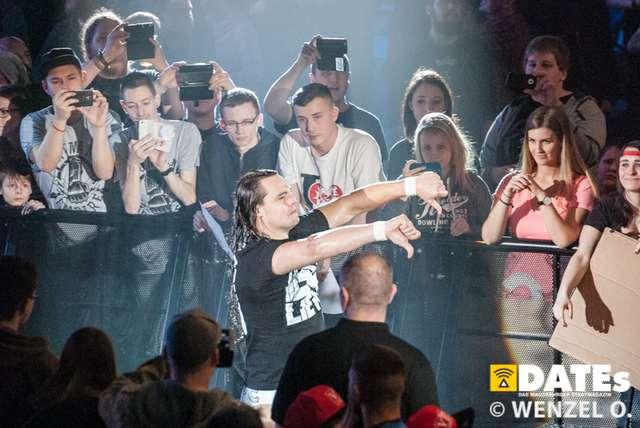 wrestling-magdeburg_619.jpg