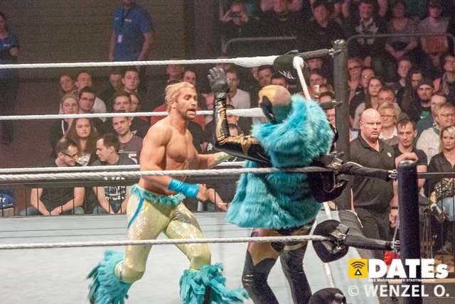 wrestling-magdeburg_634.jpg