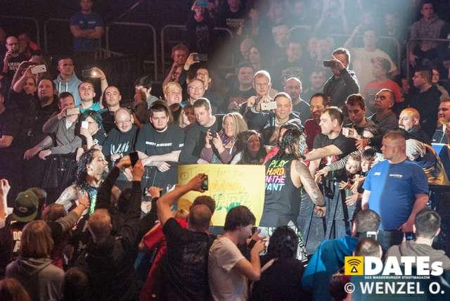 wrestling-magdeburg_646.jpg