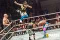 wrestling-magdeburg_651.jpg