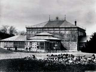 Blick zurück: Gruson Gewächshäuser