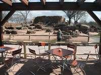 Africambo Lodge