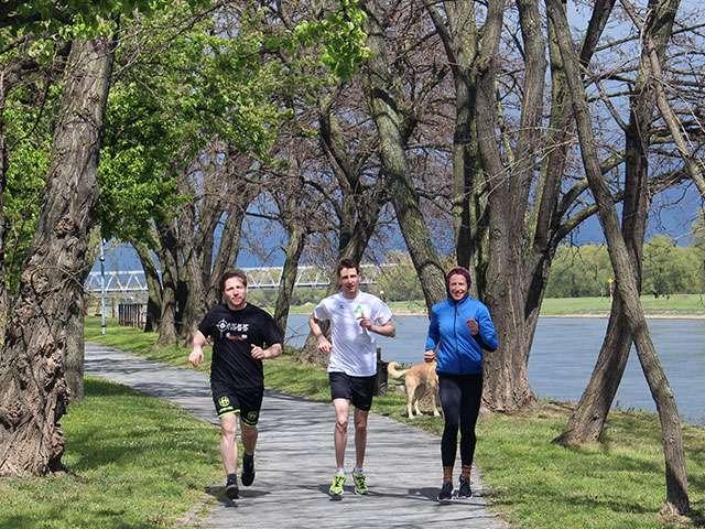 Das Trio für den Magdeburg Marathon