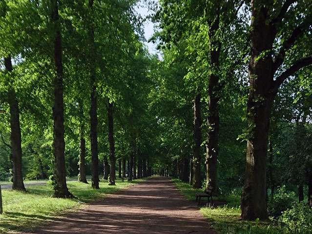 Ab in die grüne Lunge Magdeburgs