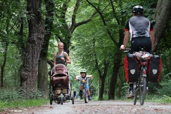 Duch den Herrenkrugpark an der Alten Elbe zurück