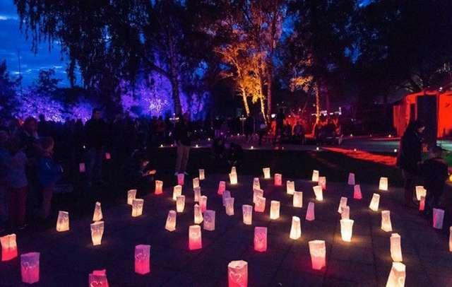 Magdeburg leuchtet