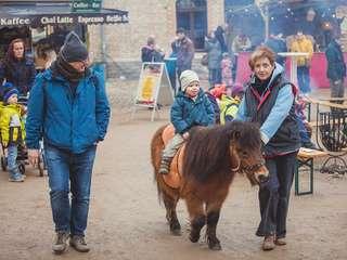 festung kunterbunt: Ponyreiten für die Kleinen