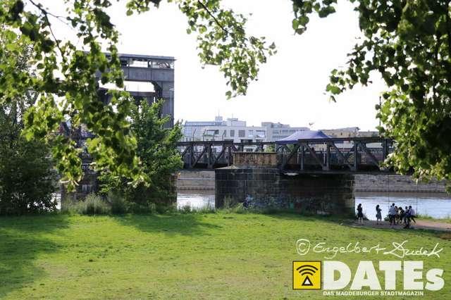 Whoopbrücke2017-101.jpg
