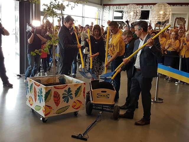 IKEA-Chefs pflanzen Baum
