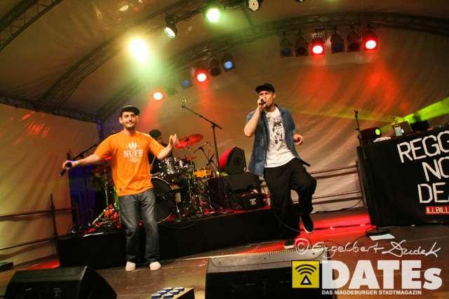 FH-Campusfest_04.06.2014_Dudek-3084.jpg