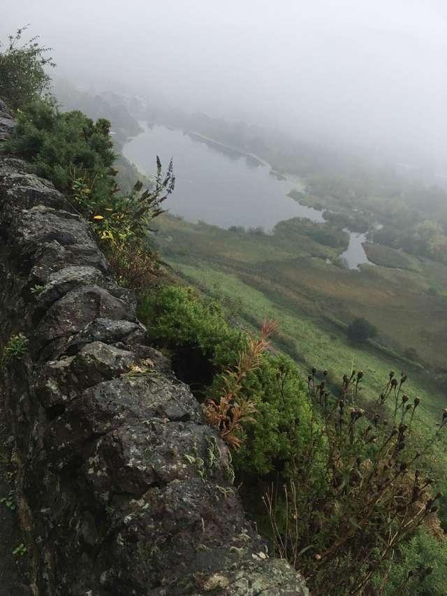 Ausblick auf einen Moor/See