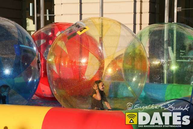 Europafest_06.06.2014_Dudek-3132.jpg