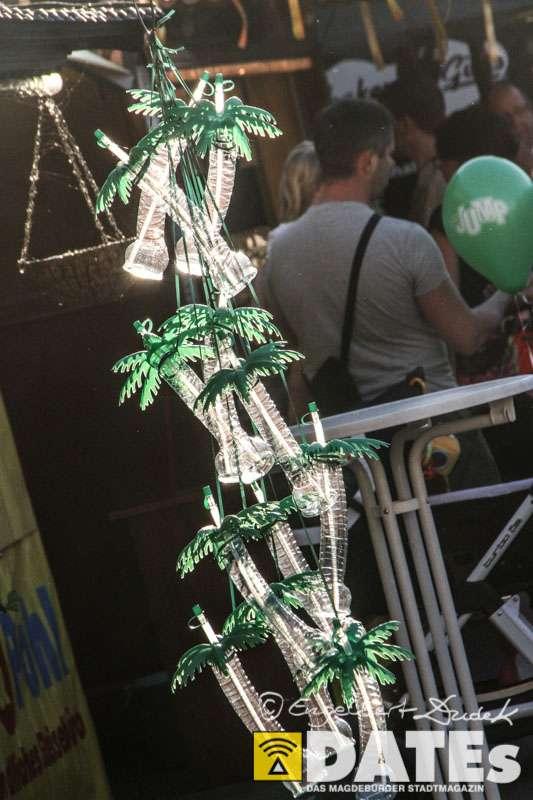 Europafest_06.06.2014_Dudek-3142.jpg