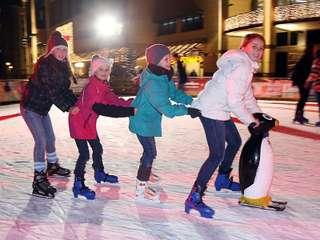 Winterfreuden on ice