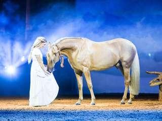 Apassionata - Gefährten des Lichts - Familienshow mit Pferden