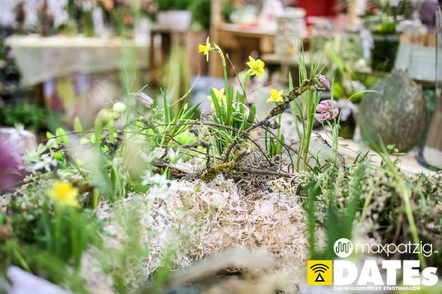 Max-Patzig-Gartenträume-4775.jpg