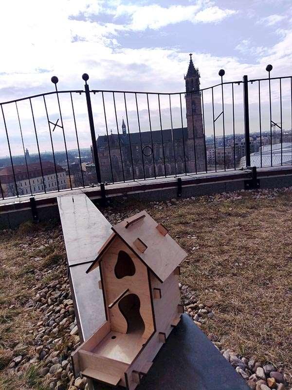 Otto's Vogelhaus steht zum Bemalen bereit