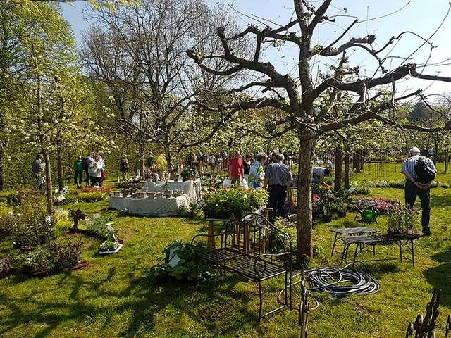 Gartenträume Hundisburg - Der barocke Schlossgarten