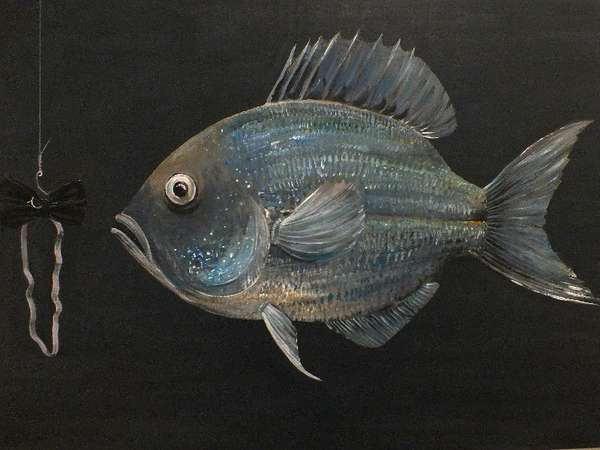Art & Vielfalt Fisch
