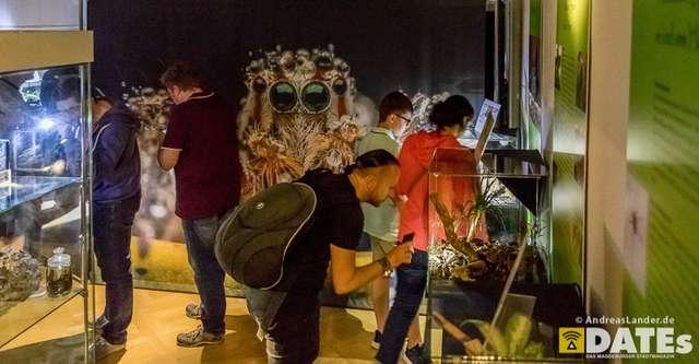 Lange-Nacht-der-Wissenschaft-2018_Galerie_074_Foto_Andreas_Lander.jpg