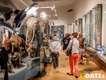 Lange-Nacht-der-Wissenschaft-2018_Galerie_058_Foto_Andreas_Lander.jpg