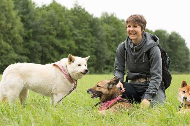 Hunting Dingo: Stephanie Koch