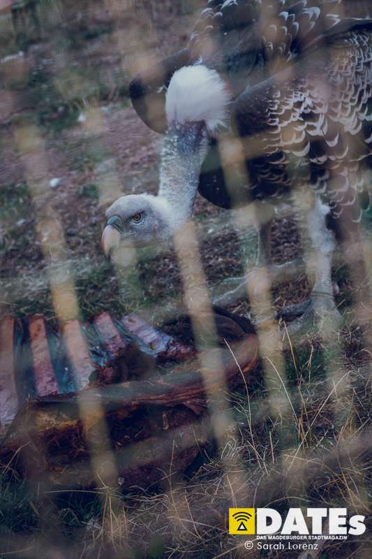 Zoonacht-2018-mit-die-Prinzen_004_Sarah-Lorenz.jpg