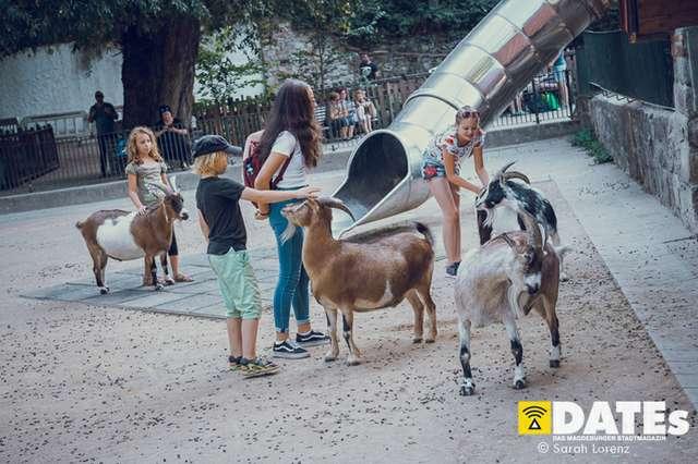 Zoonacht-2018-mit-die-Prinzen_021_Sarah-Lorenz.jpg