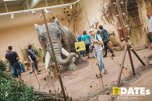 Zoonacht-2018-mit-die-Prinzen_038_Sarah-Lorenz.jpg