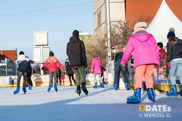 winterfreudenon-ice-420-(c)-wenzel-oschington.jpg