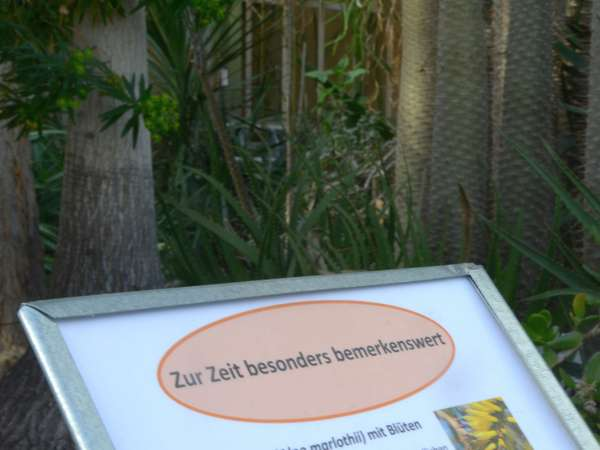 botanischemittagspause.jpg
