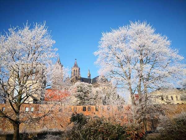 Winterliches Magdeburg