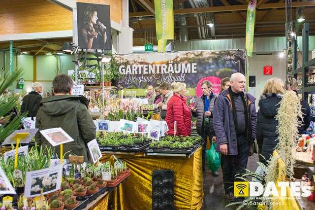 Gartenträume-Magdeburg-2019_001_(c)_Sarah_Lorenz.jpg