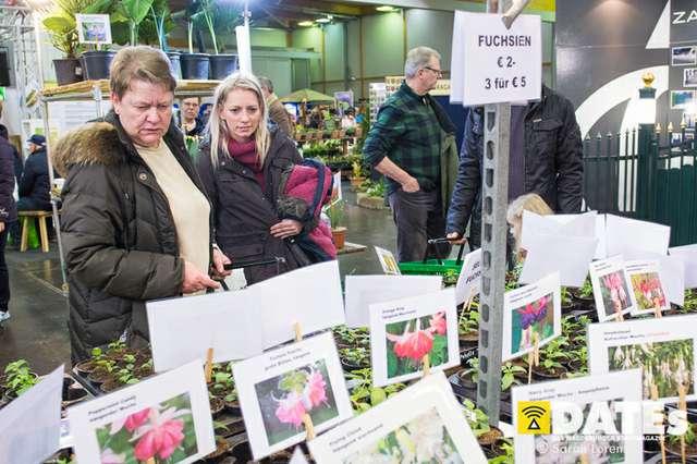 Gartenträume-Magdeburg-2019_060_(c)_Sarah_Lorenz.jpg