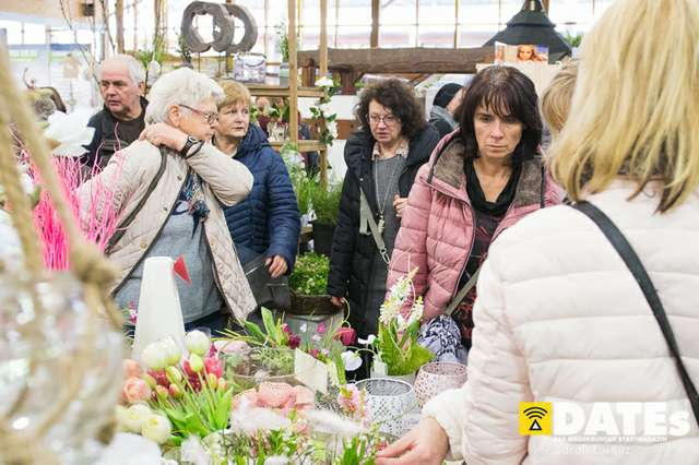 Gartenträume-Magdeburg-2019_071_(c)_Sarah_Lorenz.jpg
