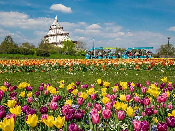 Frühling im Elbauenpark