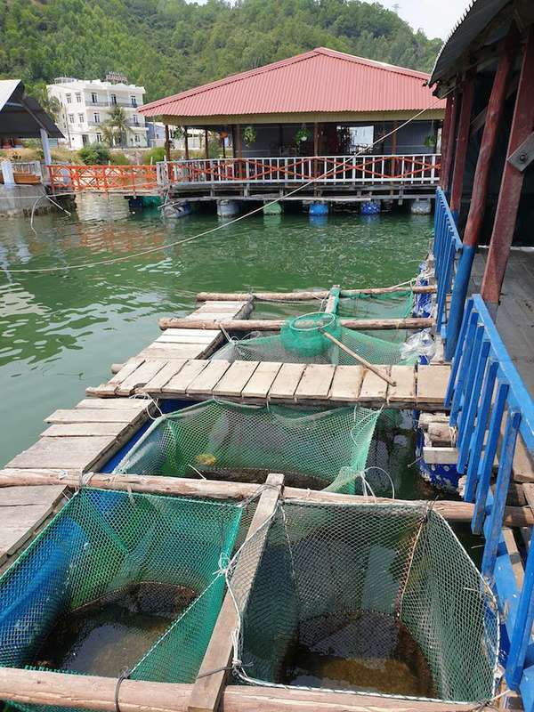 Vietnamradtour-(c)Bombach-083.jpg