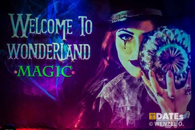Welcome To Wonderland - Magic